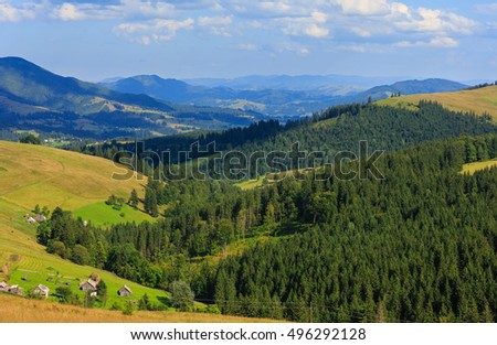 Mountain village. Summer country landscape with fir forest on slope (Carpathian, Ukraine, Verkhovyna district, Ivano-Frankivsk region).