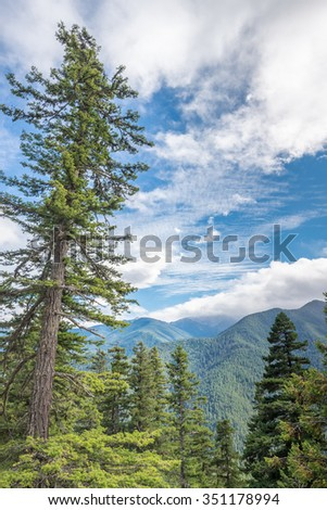 Mountain vista, from Hurricane Ridge Road, in Olympic National Park, near Port Angeles, Washington. - stock photo