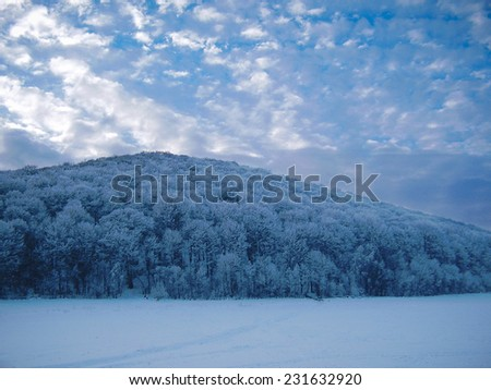 Mountain with trees on a slope covered with snow. Snowy landscape in winter. - stock photo
