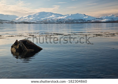 Mountains and fjord in Tromso, Norway.