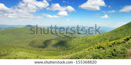 mountains covered trees