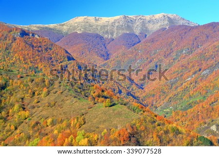 Mountains covered with colorful woods in autumn