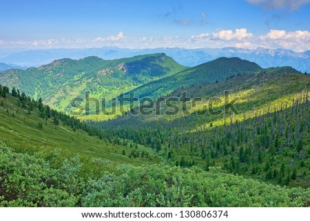 Mountains covered with the wood with sunlight spots. - stock photo