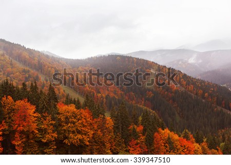 Mountains in the Autumn - stock photo