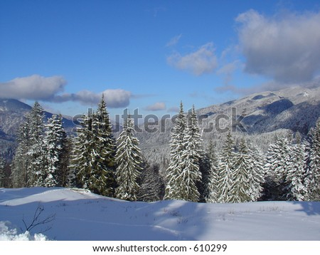 Mountains In The Winter