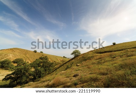 Mountains landscape in the morning. View of the mountain valley. Natural forests and plantations on a background blue sky with white clouds. - stock photo