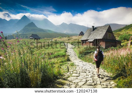 Mountains landscape. Young woman walking a trail in a green mountains. Hala Gasienicowa, Tatra Mountains, Poland. - stock photo