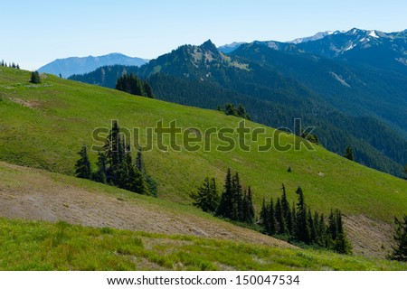 Mountains of Hurricane Ridge in Olympic National Park - stock photo