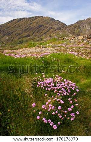 Mountains on the Beara peninsula in West Cork In Ireland Europe - stock photo