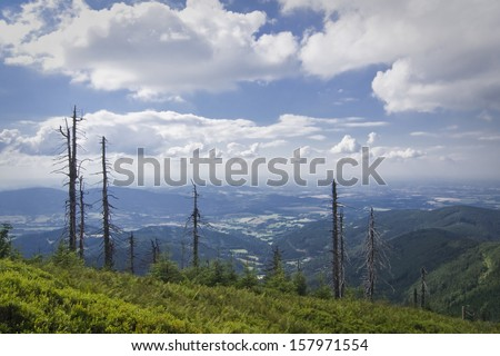 Mountains recovering from consequences of pollution and acid rain in post-communistic countries. Dead trees in the mountains of Beskydy,  - stock photo