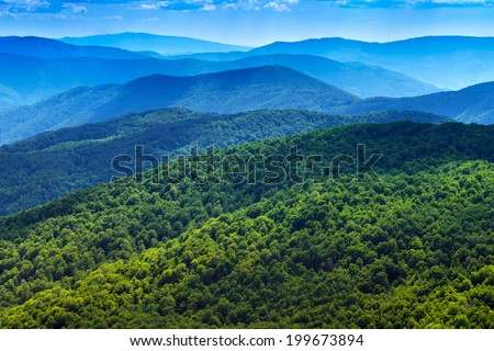 Mountains scenery background. Forest in Bieszczady National Park. Carpathians landscape, Poland. - stock photo
