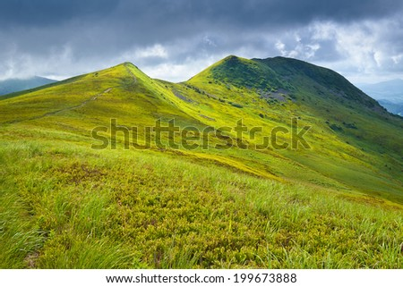 Mountains scenery. The Tarnica Peak landscape. Grass and meadow in The Bieszczady National Park. Carpathians, Poland. - stock photo