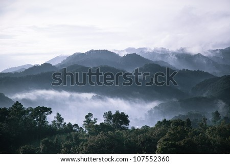 Mountains top at dawn in the Mexican rain forest near Palenque, land of the Mayans. Chiapas. - stock photo