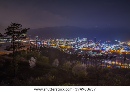 Mountains, trees, city lights