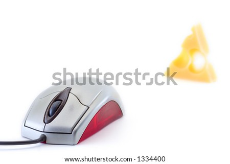 Mouse and a piece of cheese against white background - stock photo