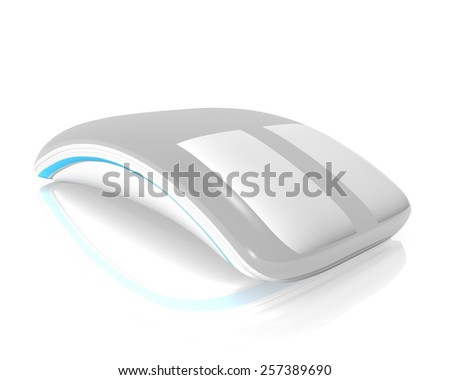 mouse isolated on a white background