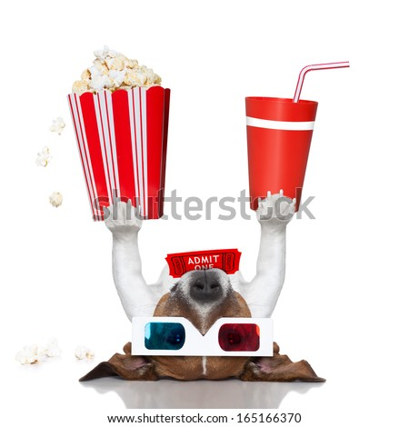 movie dog up side down holding popcorn and coke - stock photo