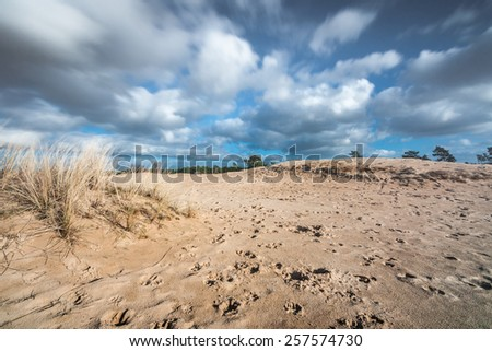 Moving Cloudy sky and sunlight over sandy desert with animal traces - stock photo