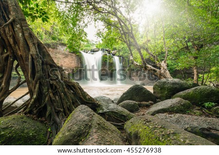 Moving mud waterfall surrounded by green tree and big stone. Sunlight shining through foliage and leaves on top. - stock photo