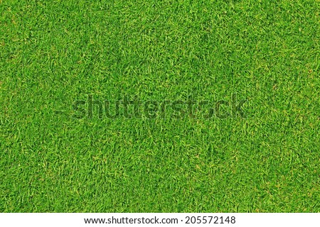 mowed grassland, typical english lawn - stock photo