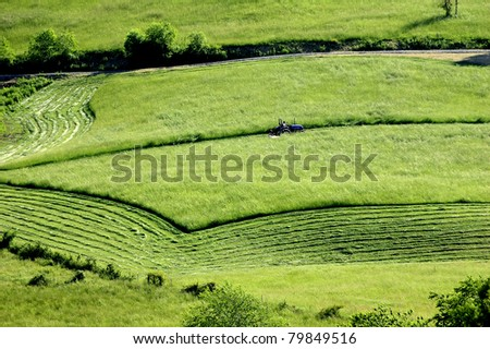 Mowing hay, field and mountain, Barbour County, West Virginia, USA