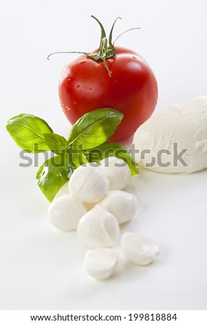 Mozzarella cheese and basil leaves - stock photo