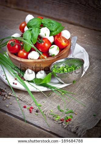 Mozzarella cheese with cherry tomatoes and basil - stock photo