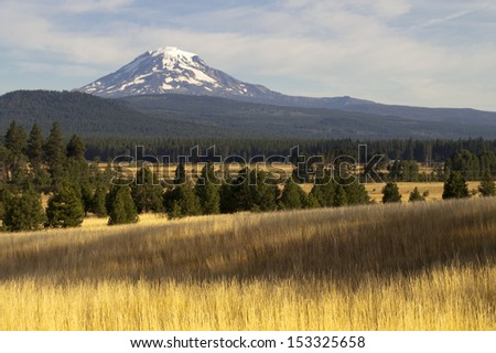 Mt Adams looms over lush ranch land in Washington state - stock photo