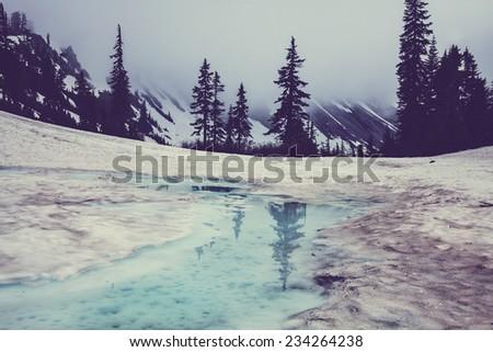 Mt. Baker recreation  Area,USA - stock photo