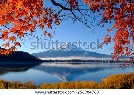 Mt.Fuji and autumn foliage at Lake Kawaguchi - stock photo