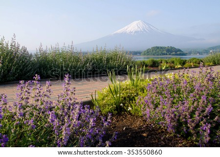 Mt.Fuji with flower garden at front - stock photo