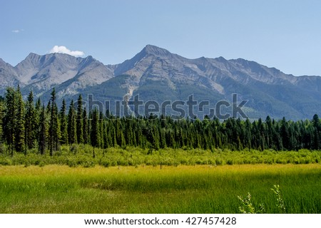 Mt. Harkin towering above lush forest and meadows in Kootenay National Park, British Columbia, Canada - stock photo