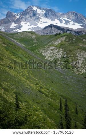 Mt. hood, cascade range, under summer skies in Oregon - stock photo