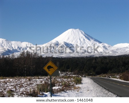 Mt Ngaruhoe - stock photo