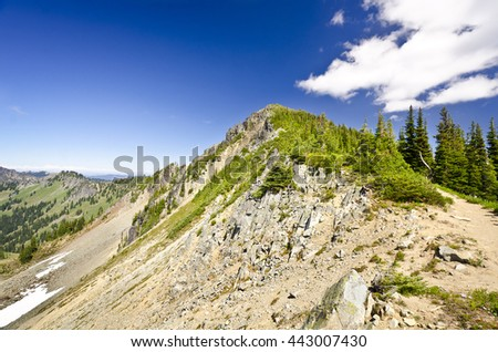 Mt Rainier From A Trail at Sunrise Point - stock photo