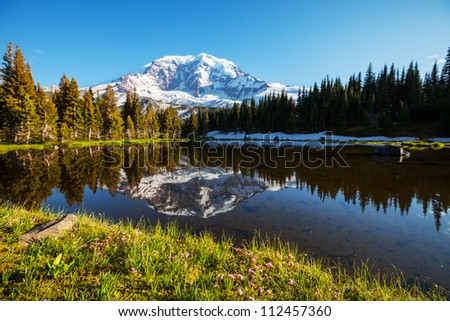 Mt.Rainier reflection - stock photo