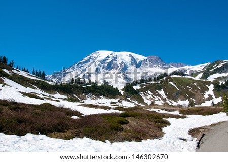 Mt. Rainier scenic landscape in early July - stock photo