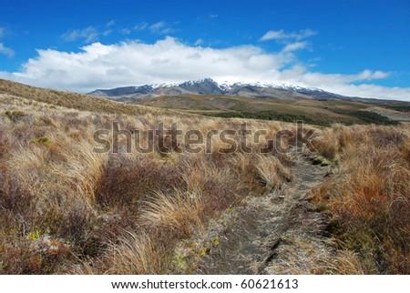Mt. Ruapehu, Tongariro national park, New Zealand - stock photo