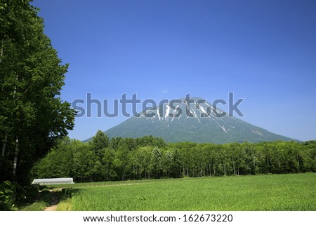 Mt. Yotei and a field - stock photo