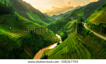Mu Cang Chai, terraced rice field landscape near Sapa, Vietnam. Mu Cang Chai Rice Terrace Fields stretching across the mountainside in north Vietnam.