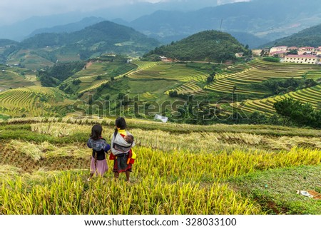 Mu cang chai, VIETNAM September 23 2014 :Children working in rice terrace on 23 /09/2014 in Sapa,Vietnam. Many children in Vietnam are withdrawn from school to be bread-winners for their families