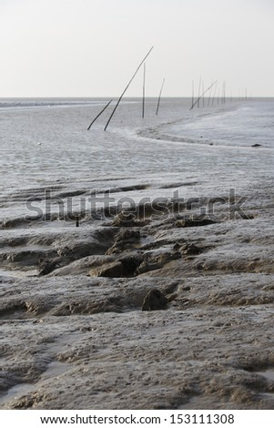 Mud flats in the bay at low tide - stock photo