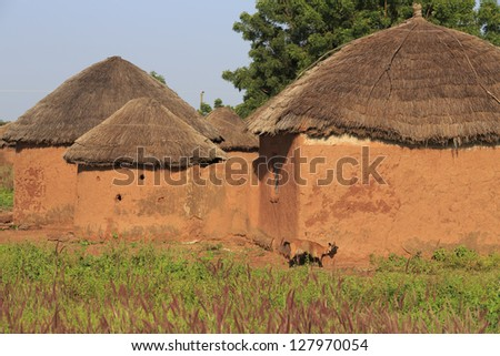 Mud huts and goat scratching himself against the wall - stock photo