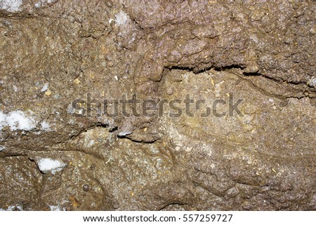 Moist soil stock images royalty free images vectors for Soil and geology