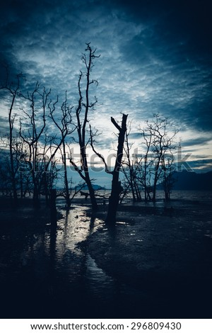 Muddy beach and dead forest - stock photo