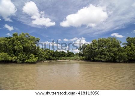 Muddy Crocodile River in Australia - stock photo