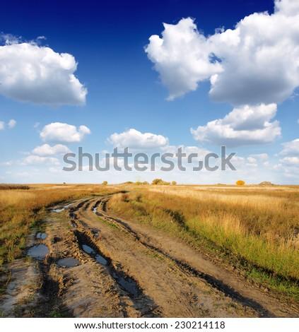 Muddy Dirt Road - stock photo