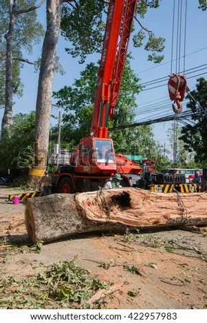 MUENG, CHIANGMAI THAILAND MAY 2016: Crane salvages huge tree trunk damage sarapee road due to heavy rain disaster on May 17, 2016 in CHIANGMAI. Storm occurred at night of MAY 17, 2016.