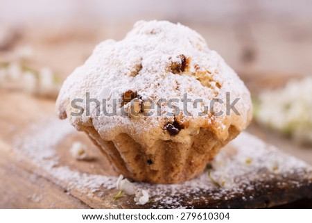 Muffins with raisins sprinkled with powdered sugar.selective focus - stock photo