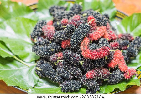 mulberry fruit is a multiple fruit. Immature fruits are white, green, the fruits turn pink and then red while ripening, then dark purple or black, and have a sweet flavor when fully ripe.
